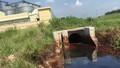 Nhà máy chiết xuất Dầu thực vật Dabaco khẳng định không có việc xả thải ra môi trường