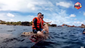 Ca sĩ Quang Vinh xin lỗi công chúng khi bị chỉ trích phá hoại tài nguyên biển
