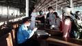 Phát hiện 2 người Trung Quốc đi xe máy từ Đà Nẵng ra Huế trong đêm