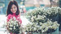 Xuân Canh Tý - Áo dài và hoa