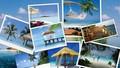 Dự kiến giảm 50% mức thu phí trong lĩnh vực kinh doanh du lịch