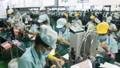 Chỉ số nguồn nhân lực Việt Nam đứng thứ hai khu vực Đông Nam Á