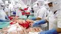 Hơn 1.400 cơ sở vi phạm an toàn thực phẩm bị xử phạt