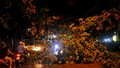 Cây xanh đổ hàng loạt trên phố Hà Nội sau trận mưa lớn