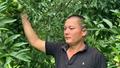 Người nông dân giỏi làm kinh tế ở huyện Thạch An, Cao Bằng