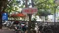 """Quận Long Biên, Hà Nội:  Xuất hiện hai điểm bị """"xẻ thịt"""" đất công để kinh doanh?"""
