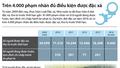 Infographic: Trên 4.000 phạm nhân được đặc xá