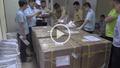 Hải quan Nội Bài bắt giữ 55 khúc sừng tê giác cất giấu tinh vi trong các khối thạch cao