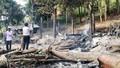 Nghệ An: Cháy rừng, lan sang thiêu rụi nhà dân
