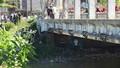 Tìm thân nhân người đàn ông chết nổi dưới cầu Cửa Tiền