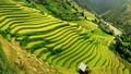 Việt Nam lọt vào top 20 điểm đến kỳ diệu của thế giới