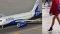Mặc váy quá ngắn, hành khách bị cấm lên máy bay