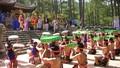 Lễ hội Đền Hùng 2016 có hai đường dây nóng tố cơ sở 'chặt chém'