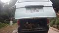 Vận chuyển cầy vòi trái phép trong rừng di sản Phong Nha