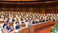 Giám sát, chất vấn những vấn đề có dấu hiệu vi phạm pháp luật