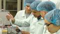 Thường trực Ban Bí thư giao Bộ Y tế mua, nghiên cứu vắc-xin COVID-19, sẵn sàng ứng phó mọi tình huống dịch bệnh
