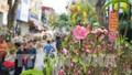 Hà Nội sẽ tổ chức 89 điểm chợ hoa Xuân phục vụ Tết Tân Sửu
