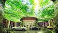 Kinh ngạc với khách sạn chứa đựng cả khu rừng tại Dubai