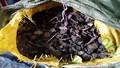 Bắt giữ hơn 60 tấn đông dược nhập lậu vào Việt Nam