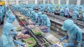 Xuất khẩu hải sản năm 2016 sẽ tăng trở lại?