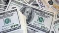 Ngoại tệ giảm trước thất vọng của số liệu kinh tế Mỹ