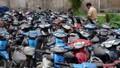Những trường hợp nào người vi phạm giao thông được tự bảo quản phương tiện?