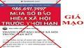 Phó Thủ tướng Trương Hòa Bình: Xử lý nghiêm hành vi mua gom sổ bảo hiểm xã hội