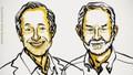 Hai nhà kinh tế Mỹ đoạt giải Nobel Kinh tế 2020 nhờ công trình nghiên cứu về đấu giá