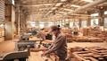 Từ 30/10, thực hiện quy định mới về Hệ thống bảo đảm gỗ hợp pháp Việt Nam