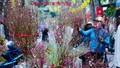 Nhiều địa phương tạm dừng tổ chức các lễ hội đầu Xuân để phòng dịch