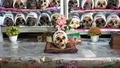 Người Bolivia trang trí đầu lâu để tôn vinh người đã mất