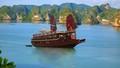 Đình chỉ hoạt động 8 tàu du lịch trên vịnh Hạ Long