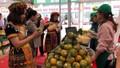 Hà Nội sẽ tổ chức nhiều đoàn giao thương hàng hóa với các tỉnh