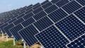 Thanh tra Chính phủ 'chốt' số phận hàng chục dự án năng lượng tái tạo ở Ninh Thuận