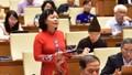 Đại biểu Quốc hội lo ngại tình trạng người sử dụng ma túy vi phạm pháp luật
