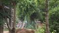Rúng động Thái Nguyên: Con trai đánh chết bố đẻ