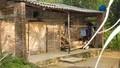 Hòa Bình: Đau lòng bé gái 5 tuổi bị làm nhục ngay tại bếp