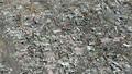 TP Hồ Chí Minh trong nhóm gia tăng thiệt hại do lũ lụt hằng năm cao nhất thế giới