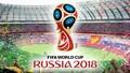 Thông tin cổ động viên Việt sang Nga xem World Cup cần biết