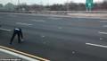 'Mưa USD' trên cao tốc, tài xế Mỹ bất chấp mạng sống lao xuống nhặt