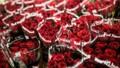bao nhiêu trẻ em Mỹ được thụ thai dịp Valentine năm nay?