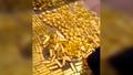 Cận cảnh 13,5 tấn vàng chất đống trong nhà 'quan tham' Trung Quốc