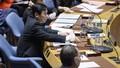 Việt Nam chủ trì Phiên họp của HĐBA LHQ về Trung Đông, bao gồm Palestine