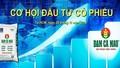 Cơ hội đầu tư cổ phiếu Đạm Cà Mau