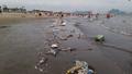 Bãi tắm Hạ Long 'ngập' trong rác
