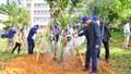 Lâm Đồng phấn đấu trồng 50 triệu cây xanh trong 5 năm
