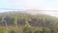 Bốn vụ cháy rừng xảy ra trên địa bàn tỉnh Thừa Thiên Huế