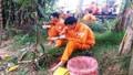 Công ty Điện lực Thừa Thiên Huế: Nỗ lực thực hiện nhiệm vụ trong thời tiết cực đoan
