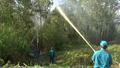 Cà Mau lo đối phó khi 80% diện tích rừng dự báo cháy cấp V