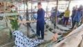 Kiên Giang: Tóm gọn đối tượng giết người cướp tài sản sau 48 giờ gây án